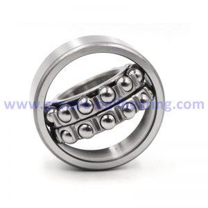 1209 bearing